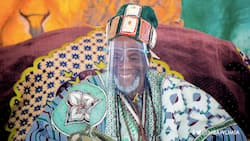 Ya Na and Dagbon appreciate Akufo-Addo's work; show gratitude to him
