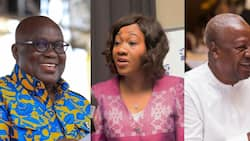 EC admits to errors in presidential results collation but says it's negligible