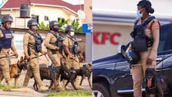 Dampare adds dog patrol to new reforms in Ghana Police Service at vantage points; photos drop