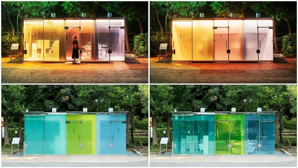 A collage of the toilets. Photo source: Nippo Foundation