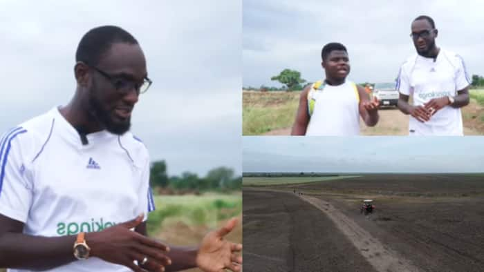 Meet young man who left America to set up 10,000 acre rice farm in Ghana