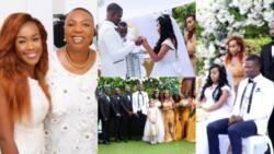 Lawyer Amanda Clinton's identical twin sister marries fiancé; beautiful photos emerge