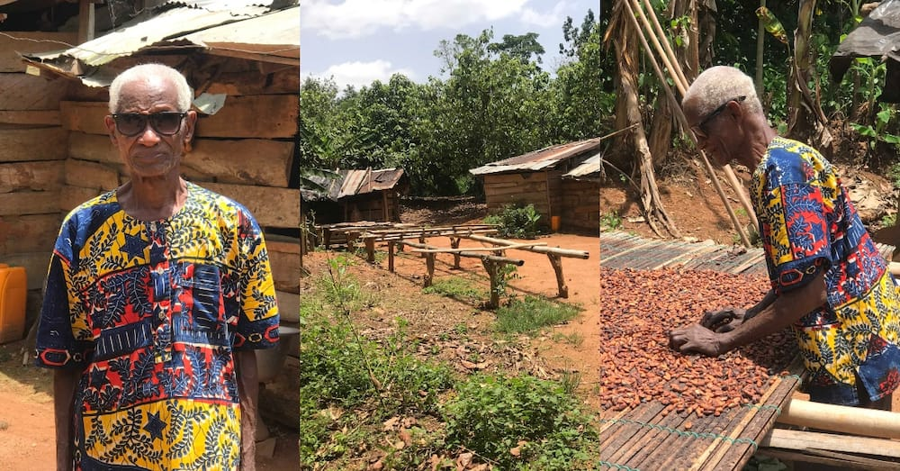 85-year-old Ghanaian farmer discovered living alone in his small 'village'