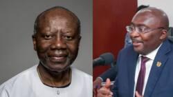 Bawumia, Ofori-Atta, 3 other who can make good NPP candidates for president