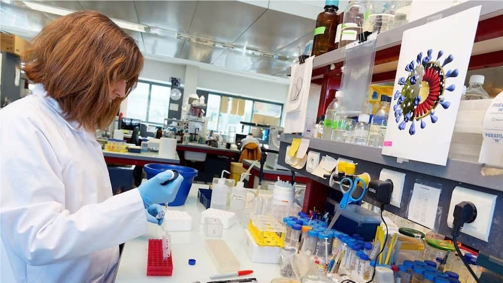 An illustrative picture showing a scientist in a lab. Photo source: NewScientists