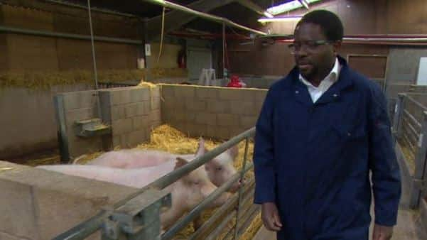 African professor leads campaign to produce 'edited' animals for poor farmers