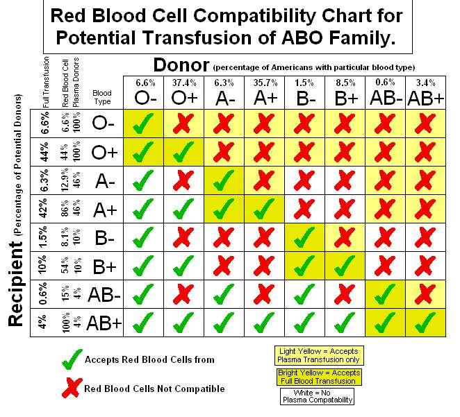 blood type genotypes