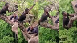 Video of 'fearo' security personnel going through rappel training cracks ribs online