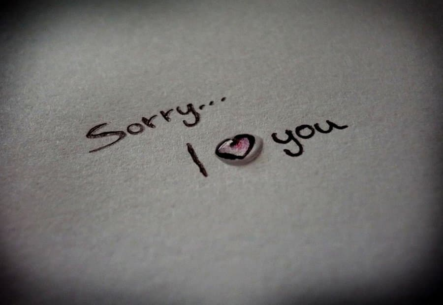 Sorry Quotes When Asking For Forgiveness Yencomgh