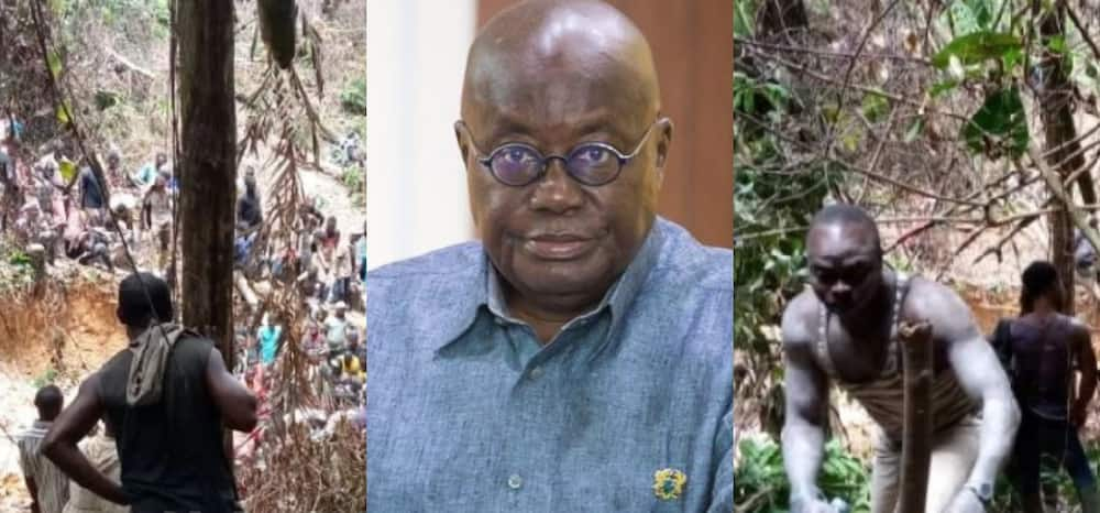 Former SA High Commissioner calls for 'shooting to kill' as the best solution to end galamsey