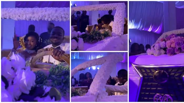 GH couple set record with biggest-ever wedding cake shaped like V8; drive it in video