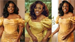 Nana Aba Anamoah stuns in gold-themed dress as she delivers stunning photos to mark her birthday