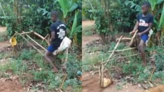 Young boy invents fully functional excavator using tree branches; video impresses many
