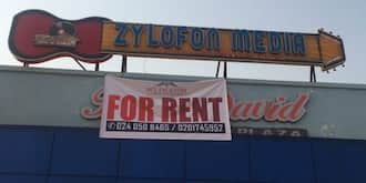 Landlord throws out NAM 1's Zylofon Media and offers space for rent