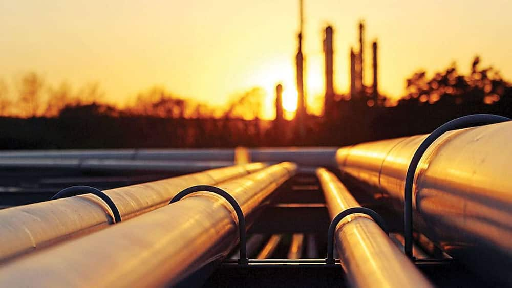 COVID-19: Experts predict oil producers will soon increase output