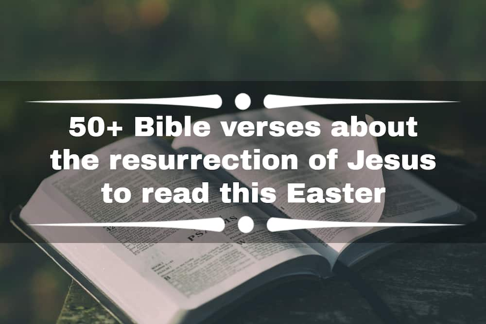 Bible verses about the resurrection of Jesus
