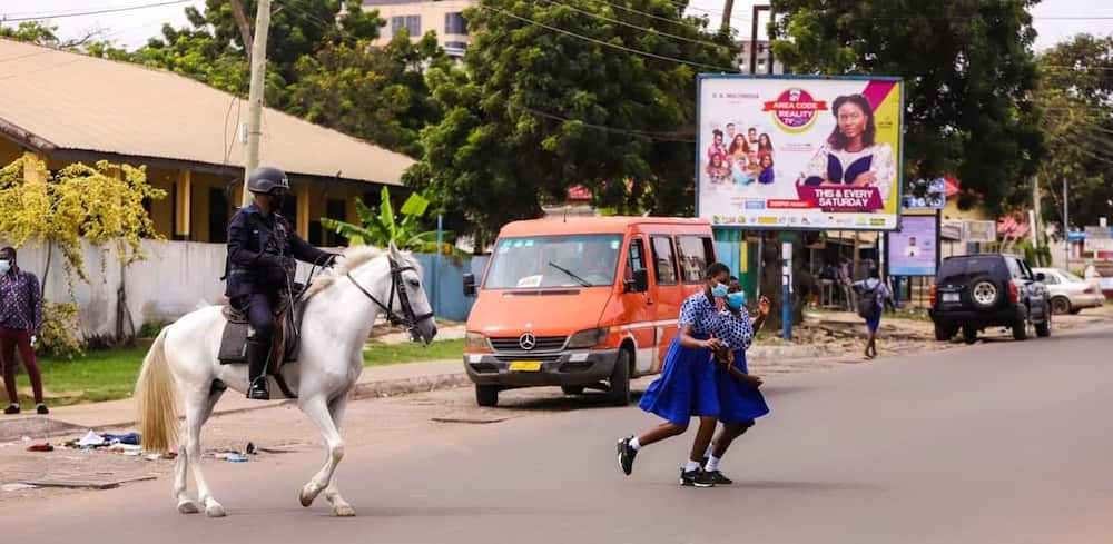 """Ghana Police now uses trained horses for zebra-crossings; """"but fix faulty traffic lights"""" - Ghanaians chide"""