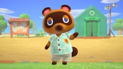 30 hilarious Animal Crossing memes to brighten up your day