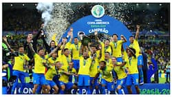 Copa America 2019: Brazil crowned champions following emphatic victory over Peru