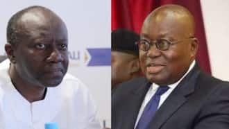 Ofori-Atta to provide details about Akufo-Addo's rented private jet in two weeks