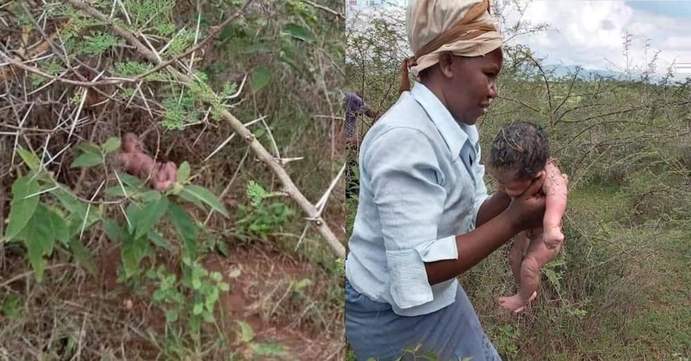 Photos of newborn baby being rescued from the bush heat up Twitter with massive reactions