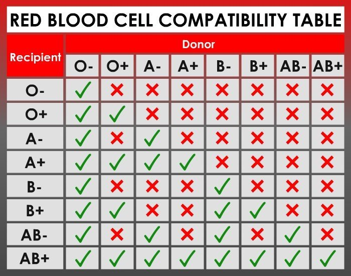 Blood group compatibility for marriage: Does it really matter?