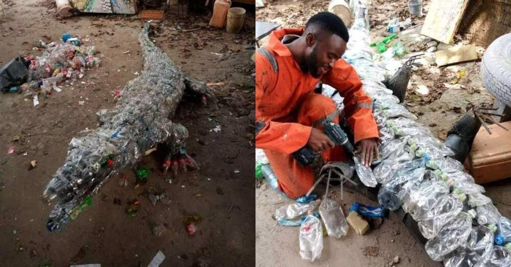 Talented man creates real-looking crocodile using plastic bottles