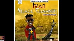 Iwan - Village Champion: video, mp3 and facts