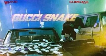 Wizkid - Gucci Snake ft. Slim Case: video, mp3, lyrics and facts
