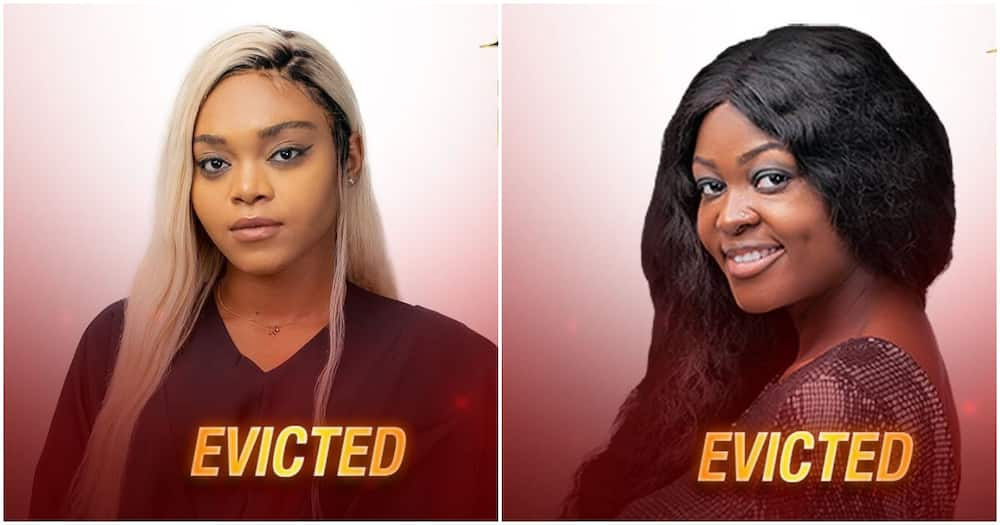 BBNaija: Moment housemates voted two of them out of Big Brother's house (video)