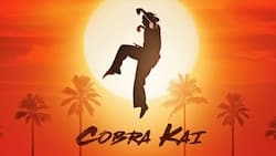 Cobra Kai actors ranked by popularity: real names, roles, latest photos