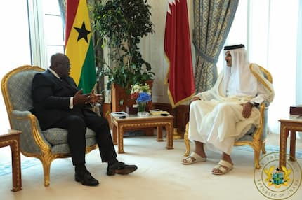 Emir of Qatar showers praises on Nana Addo for being an excellent leader