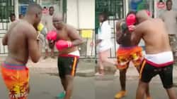 Bukom Banku and son spar on the streets in an exhibition bout