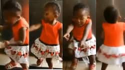 Video of 2-year-old girl making adorable dance moves to Stonebwoy's Putuu surfaces on the internet