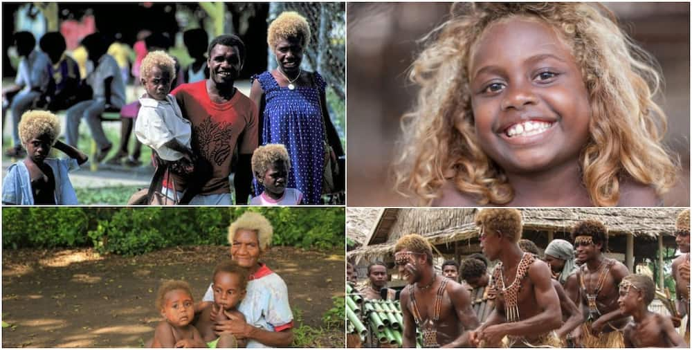 Melanesians: Interesting things about the world's only black blondes