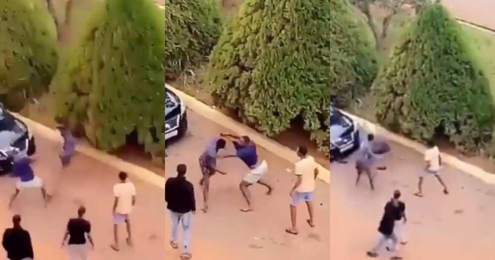 Odo ma nipa gyimi: Video drops as 2 KNUST boys fight over Level 100 girl