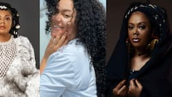 Celebrity plush lifestyle: Nadia Buari shares a view of her glass mansion in 2 photos