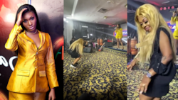 I like this song because of Shatta Wale and not you - Afia Schwar replies Wendy Shay after she embarrassed her for dancing to Stevie Wonder