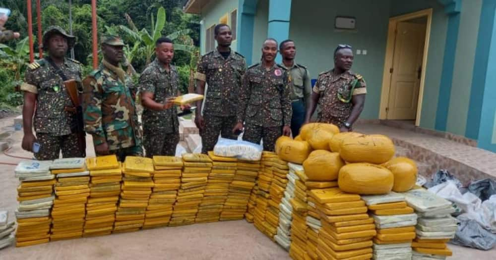 607 parcels of 'wee' intercepted at Wli Todzi in the Volta region by Immigration officials
