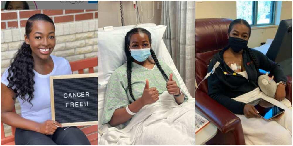 Elsie survived blood cancer