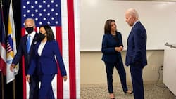 5 photos of US vice president-elect Kamala Harris in her signature power suits