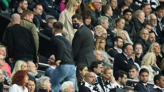 Panic as Newcastle vs Tottenham Game Briefly Halted After Fan Collapses