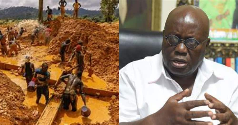 Go to court if you think it is wrong to burn galamsey excavators – Akufo-Addo