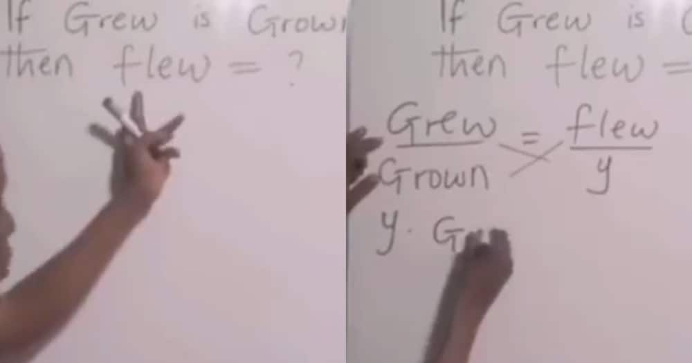 Video of Teacher Using ration and Proportion to find past Participle of 'grew' Surfaces Online