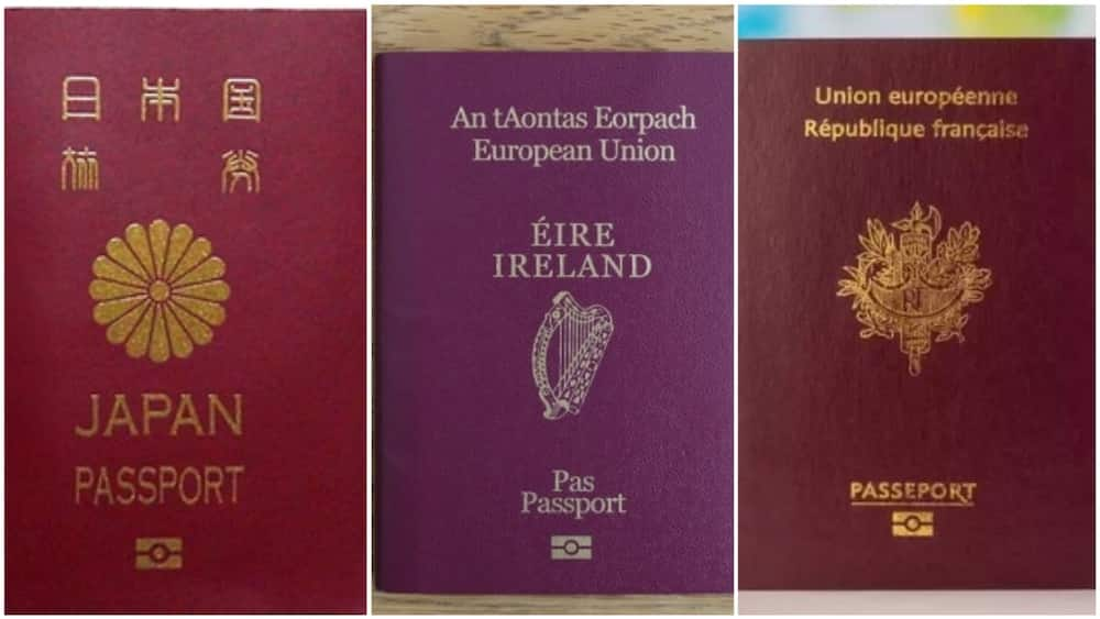 A collage of some of the world's strongest passports. Photo source: Wise Geek