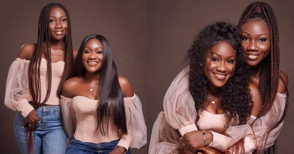 Black beauties: Mother proudly shares photos of her pretty twin girls to celebrate their birthday