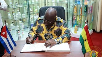 Ghana has a new development bank, experts warn against family and friends appointments