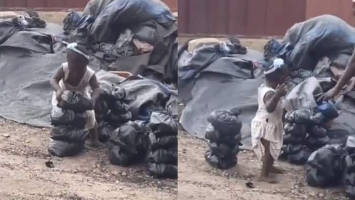 Find her for me - Wendy Shay says as video of baby helping mom sell charcoal surfaces