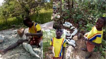 Talented Zimbabwean teenager shows off his creative sculptures